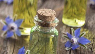 Borage oil là chất gì? Có công dụng gì trong mỹ phẩm?
