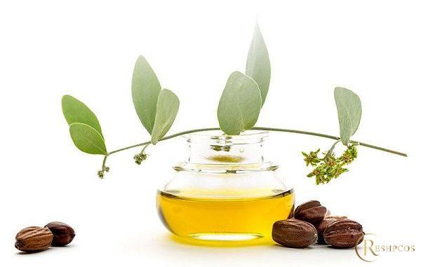 Simmondsia Chinensis Seed Oil trong mỹ phẩm là chất gì? Có tác dụng gì?